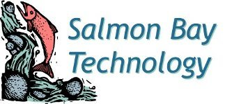 Salmon Bay Technology - IT Solution